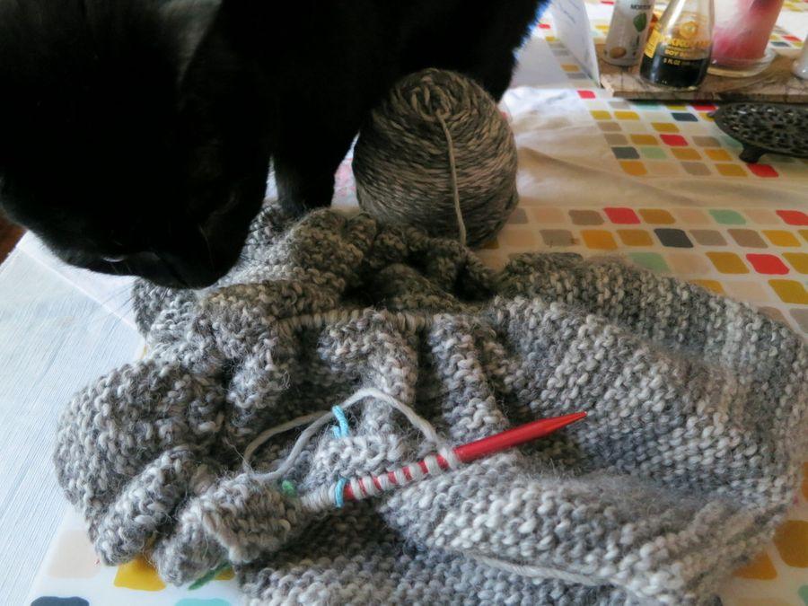 1-scarf.0105